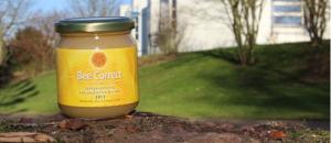 Bee Correct – Süßer Honiggenuss von studierten Bienen