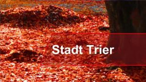 Trier wird beschnitten