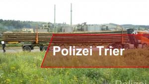 Langholztransporter bricht das Gesetz