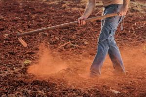 SoLaWi!? Solidarische Landwirtschaft – was ist das?